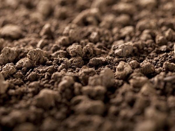 土壤底泥检测